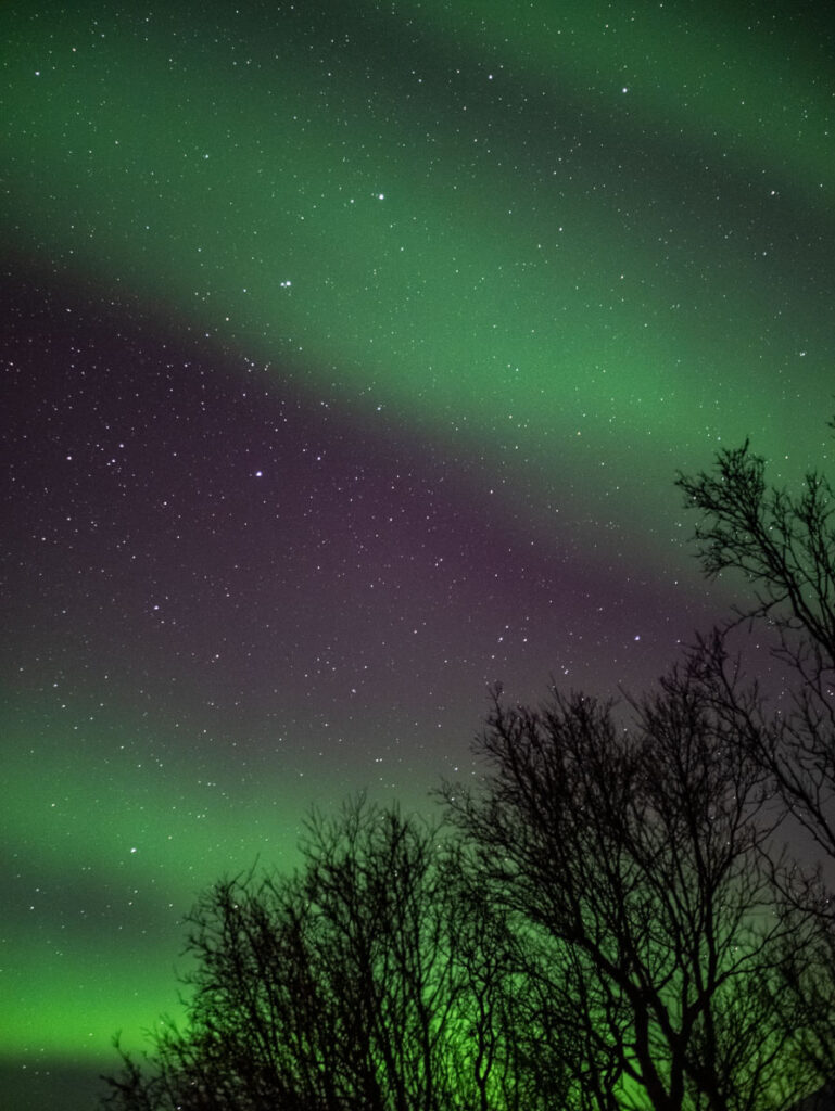 Tromso guide to Northern Lights