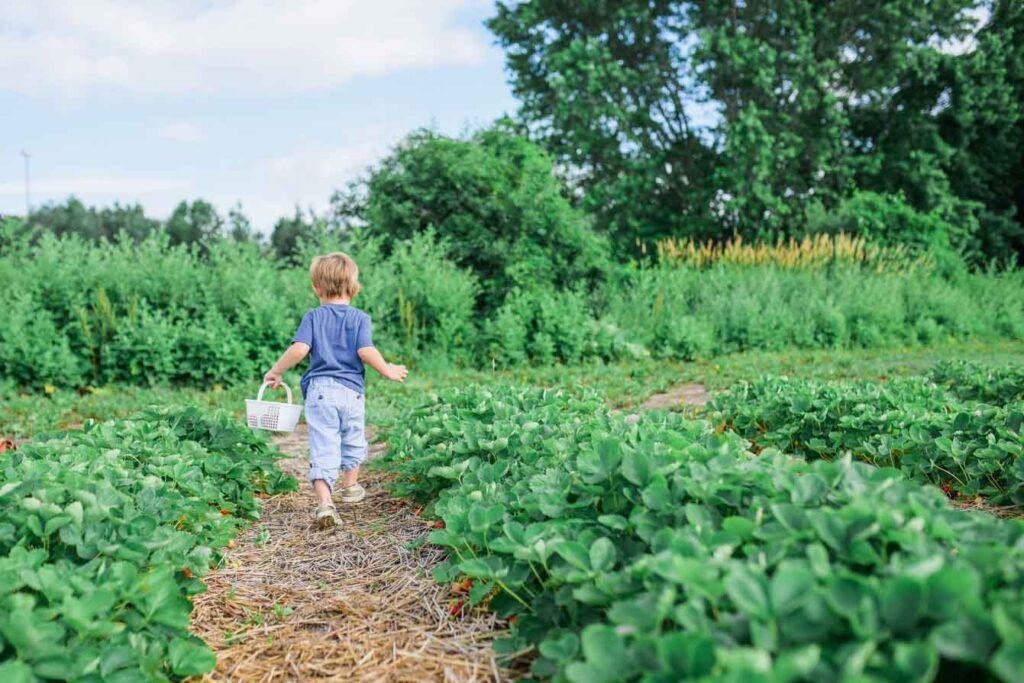 Kid walking outside on farm
