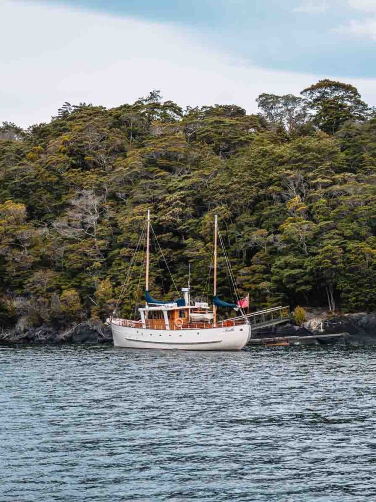 things to do in te anau fiordland cruise